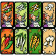Csótányleves, nyelvtörő kártyajáték 6 éves kortól - Drei Magier Spiele