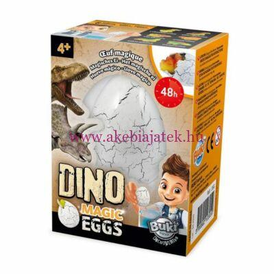 Dinó varázs tojás - BUKI
